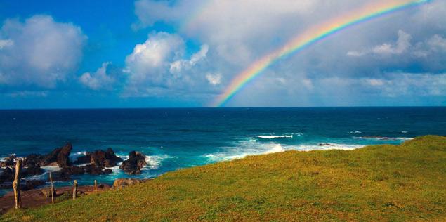 Maui Rainbow photo