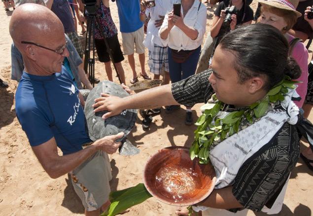 Hawaiian Honu blessing at the Maui Ocean Center
