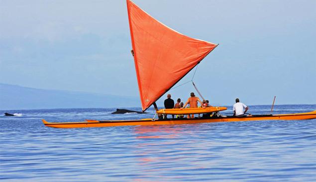 Outrigger Canoe tour in Wailea