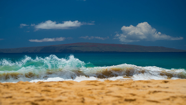 Shorebreak, anyone?